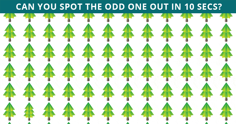 Only About 7% Can Ace This Odd One Out Test! Find Out If Your IQ Is High Enough To Pass This Challenge
