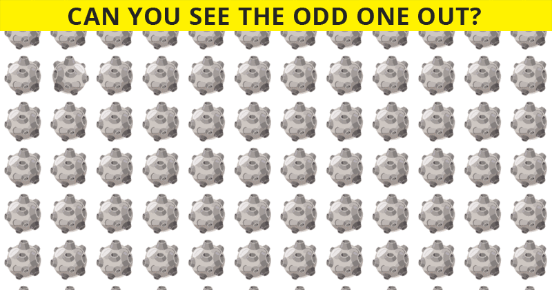 No One Can Score A Perfect 10 On This Odd Ones Out Visual Quiz Without Cheating