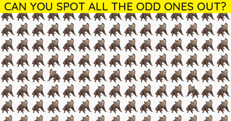 You Will Never Score More Than 50% In This Tricky Odd One Out Visual Puzzle