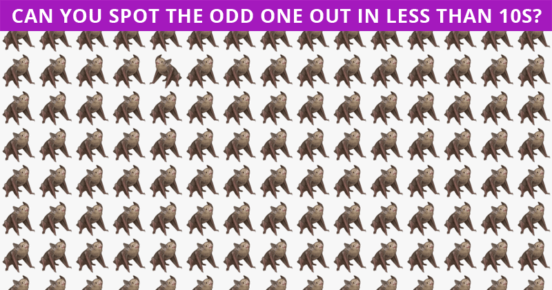 Only 5 Out Of 100 People Will Graduate From This Tricky Odd One Out Test!