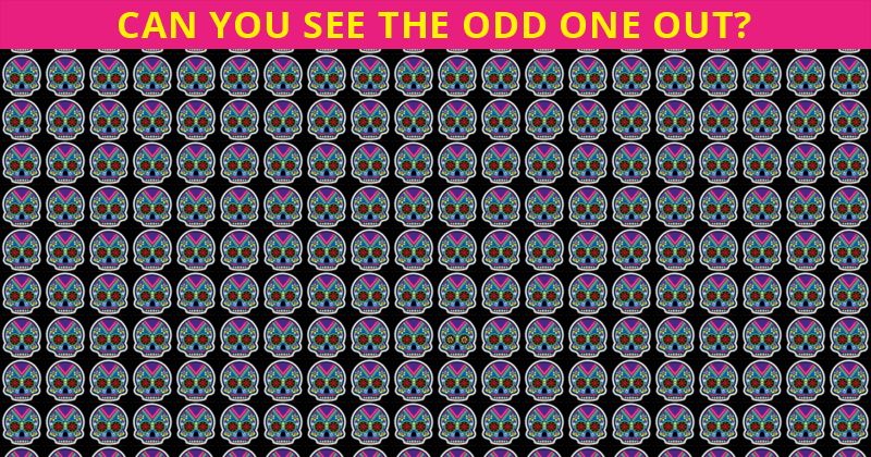 Only 15 People Have Passed This Odd One Out Visual Test So Far! Will You?