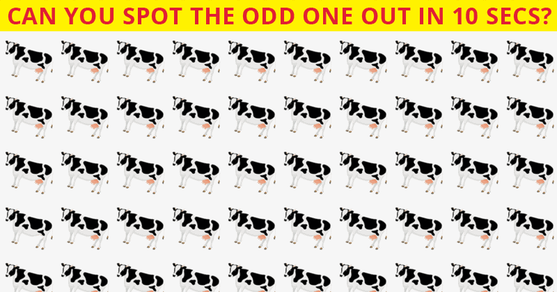 Very Few People Can Complete This Odd Ones Out Visual Challenge In 60 Seconds Or Less. Can You?