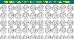 Only 8% Of People Can Ace This Odd One Out Visual Test. Are You Up To The Challenge?