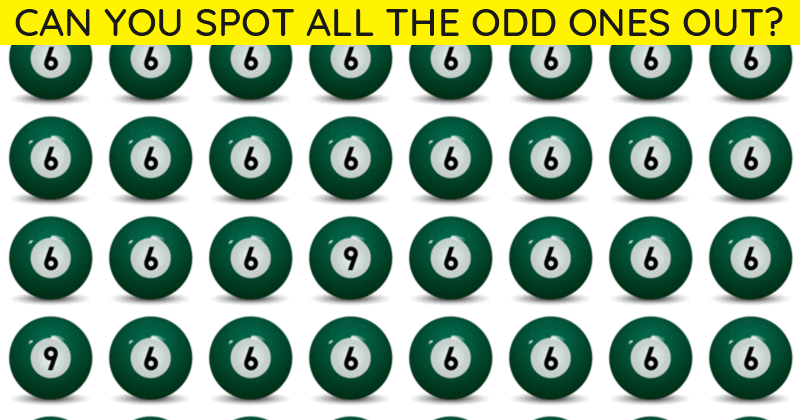 Only 8% Of People Can Beat This Difficult Odd One Out Quiz. How About You?