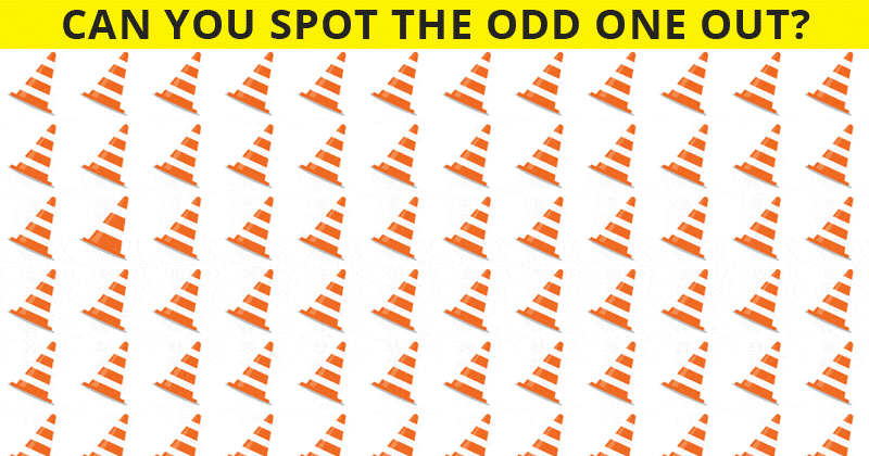 Only 1 In 30 Sharp-Eyed People Can Ace This Difficult Odd Ones Out Visual Challenge. How About You?