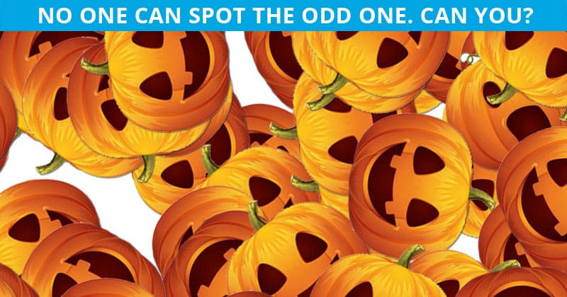 This Odd Pumpkin Out Visual Puzzle Will Determine Your Visual Perception!