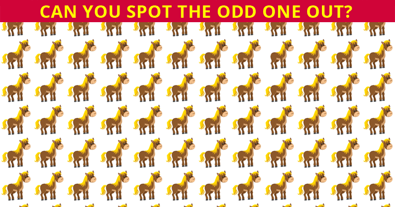 IQ Test: Spot The Odd One Out In Less Than 10 Seconds…!