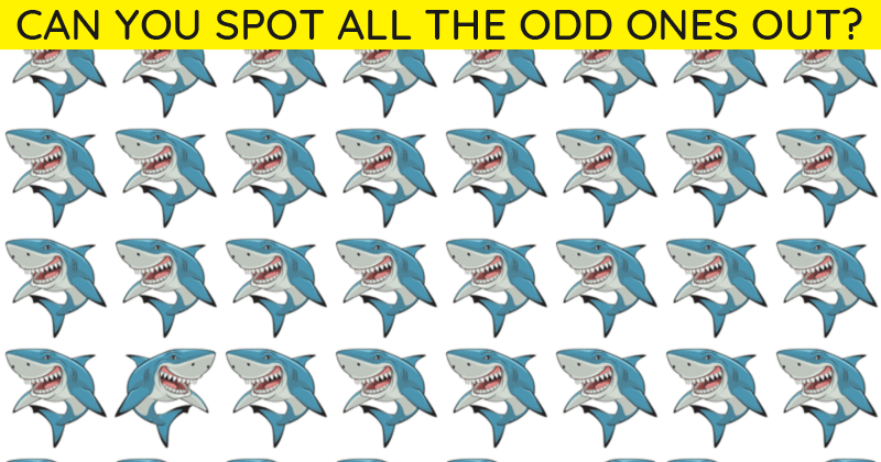 This Odd One Out Visual Game Will Determine Your Visual Perception Abilities In 60 Seconds