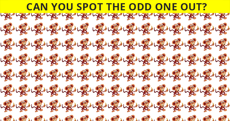 If You Can See The Odd One Out Within 10 Seconds, You Have An Unusually Sharp Brain