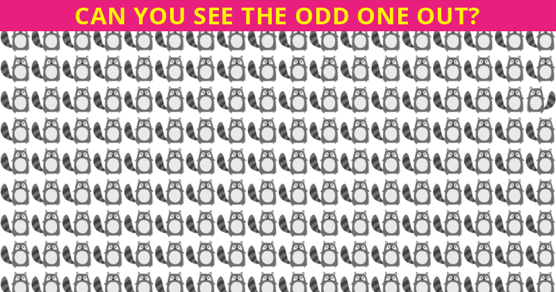 Almost No One Can Ace This Odd One Out Puzzle. Are You Up To The Challenge?
