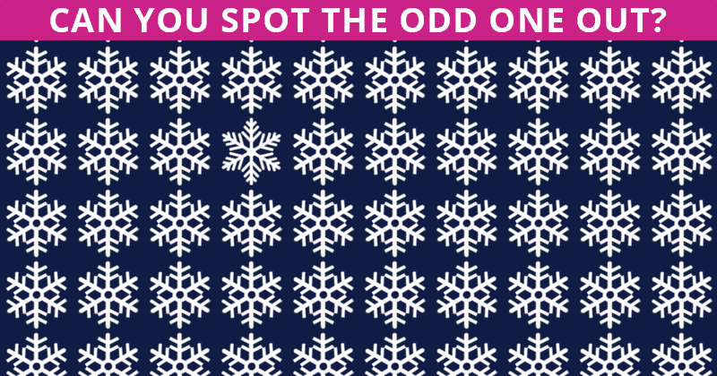 Only About 3% Can Nail This Odd One Out Test! Find Out If Your IQ Is High Enough To Pass This Challenge
