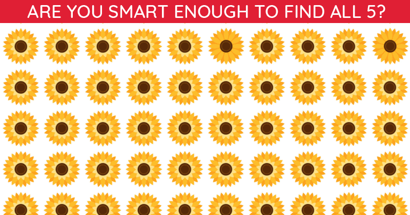 This Odd One Out Puzzle Will Determine Your Visual Perception Talents In Less Than One Minute